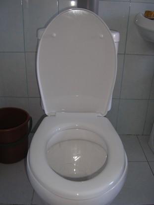 сиденье для туалета