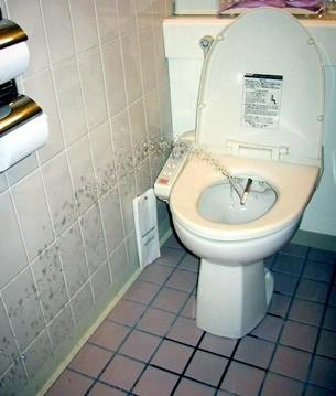 душ для туалета