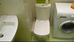 ремонт туалета с чего начать