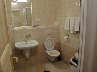 туалет и ванная в доме