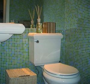 туалет из пластика
